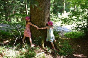 Kinder zeigen ihre Liebe zur Natur und umarmen einen Baum.