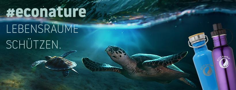 Schildkröte im Ozean
